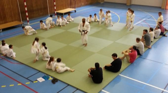 Les mercredis Handi-Judo